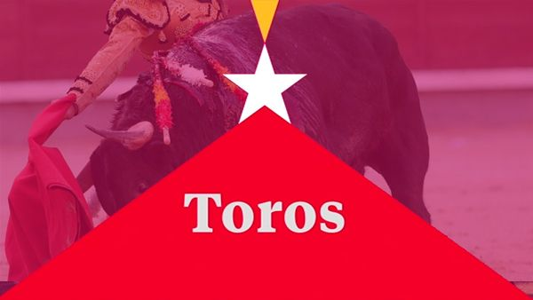 TOROS TELEMADRID